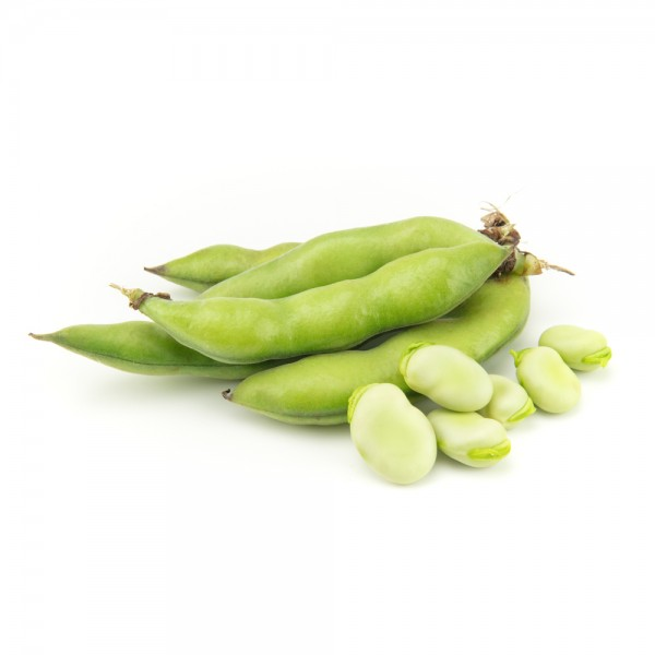 Fresh Fava Beans per Kg 109368-V001 by Spinneys Fresh Produce Market