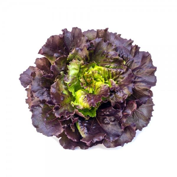 Oakleaf Red Lettuce Local per Piece 109620-V001 by Spinneys Fresh Produce Market