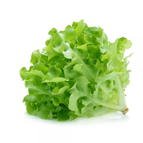 Oakleaf Green Lettuce per Piece 109621-V001 by Spinneys Fresh Produce Market