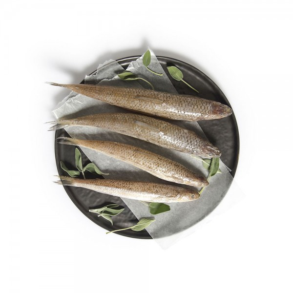 Aarmout per Kg 127406-V001 by Spinneys Fresh Fish Market