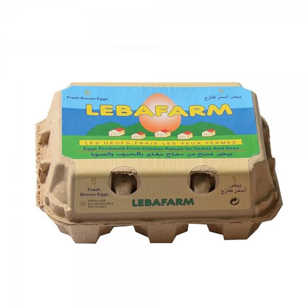 Lebafarm Eggs Brown 6pc 128075-V001 by Lebafarm