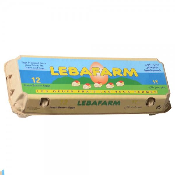 Lebafarm Eggs Brown 12pc 128076-V001 by Lebafarm