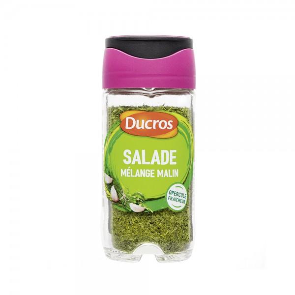 MELANGE SPECIAL SALADE JAR 169209-V001 by Ducros