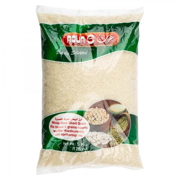 Egyptian Rice 283536-V001 by Aoun