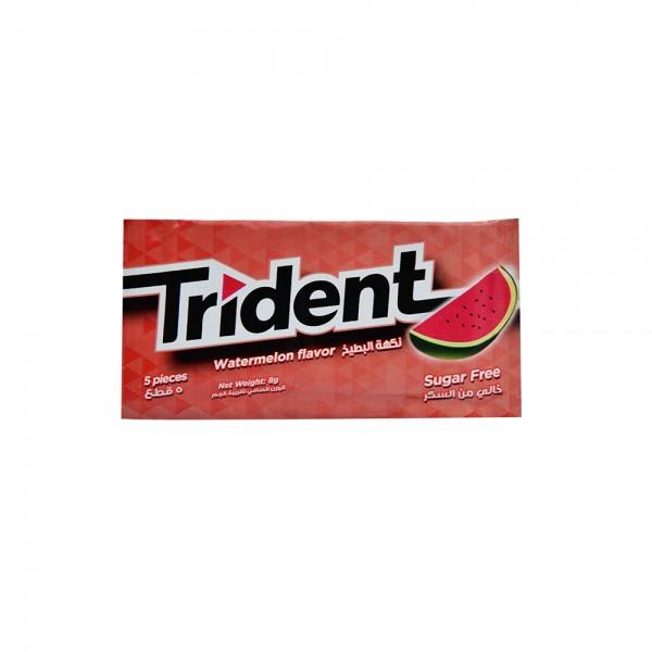 Trident Watermelon Gum - 5Pc 390174-V001 by Trident