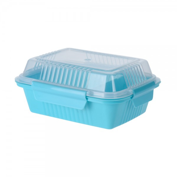 Eh  Lunchbox Plastic 4 Assorted Clr - 20X16Cm 523091-V001 by EH Excellent Houseware