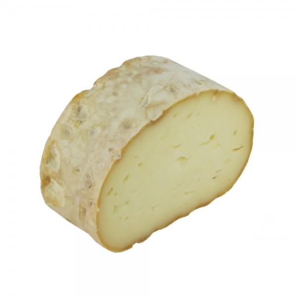 Burgassia Buche Blanche 524412-V001 by Burgassia