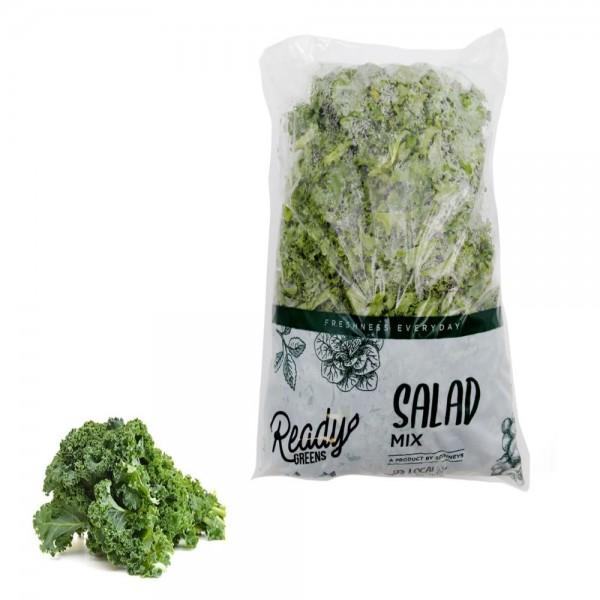Ready Greens Kale Bag 536532-V001 by Ready Greens