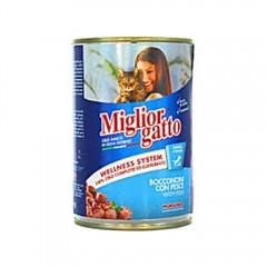 Miglior Cat Food Fish - 405G 310359-V001 by Miglior Cane