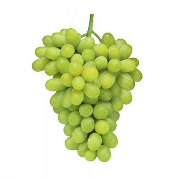 Thompson Seedless Grape Fresh Fruit Per Kg
