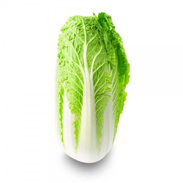 Chinese Cabbage Local 1 Pc