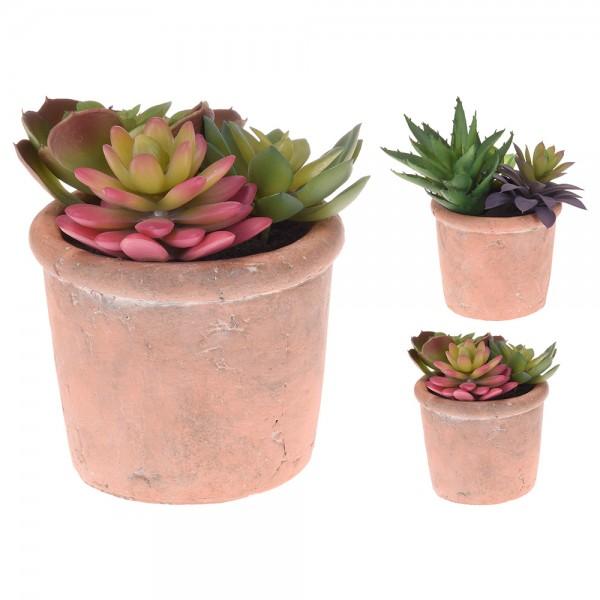 Eh Cactus In Terracotta Pot Mixed Design - 1Pc