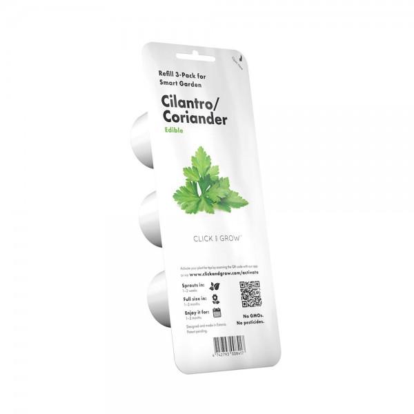 Cilantro/Coriander Plant Pods