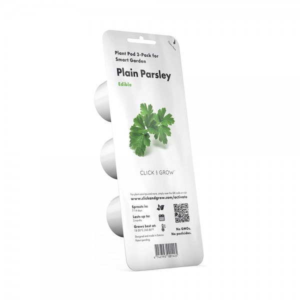 Curly Parsley Plant Pods