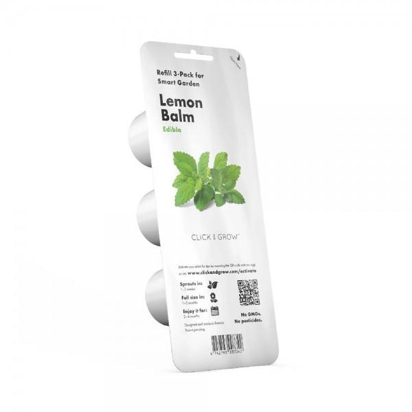 Lemon Balm Plant Pods